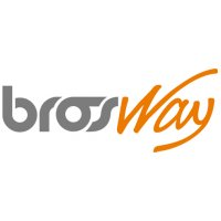 часы BrosWay
