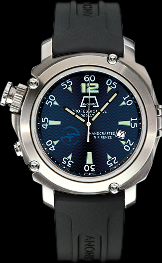 Anonimo Firenze Professionale C.N.S.
