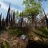 Omega принимает участие в проекте по охране экологии Индонезии