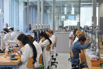 фабрика компании Fiedler SA